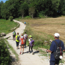 Last 100 km of the Camino Francés: From Sarria to Santiago